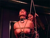 Asian gets weighted clamps on her tits