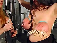 Big boobs get tied up with rope and then clamped tightly until they're red and swollen