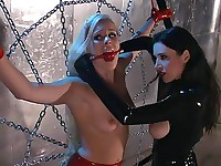 A blonde is tormented in a spider web