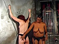 Slave squeals from a vicious ass caning