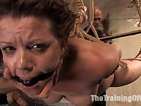 Slave trainee struggles through sex training Actors: Lilla Katt, Maestro, Princess Donna Dolore, Mark Davis
