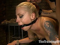 Lorelei Lee Day 1Fall From Grace-The Retraining