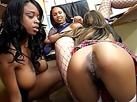 Two bush hounds licking a black girl