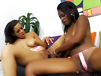 Ebony Pornstars Toying Their Holes