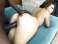 See brunette pornstar Tia Sweets hardcore sex video as she and her stud go for a wild fuckfest. This slutty babe gets down and dirty as she and her stud doggyfucks. See her yummy titties and her wet pussy get rammed hard by her black hottie's pulsating dick.