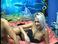 Realsensations's Webcam Show Nov 8